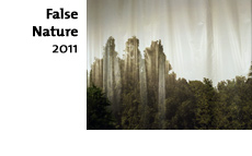False Nature